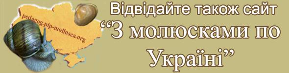 банер З молюсками по Україні